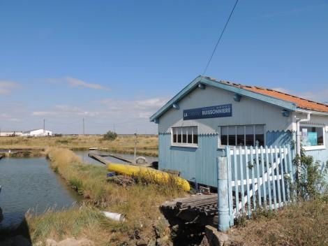 la-cabane-2012-chaillevette-la-tremblade-019