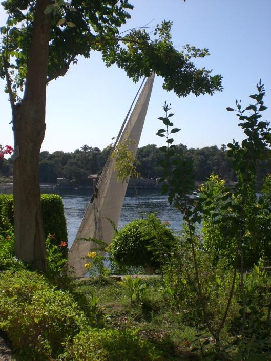 EGYPTE Février 2009 123