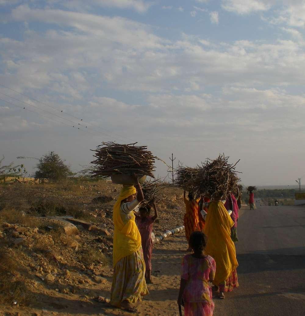 INDE DU NORD - Rajasthan - Janvier 2008 136.jpg COPIE