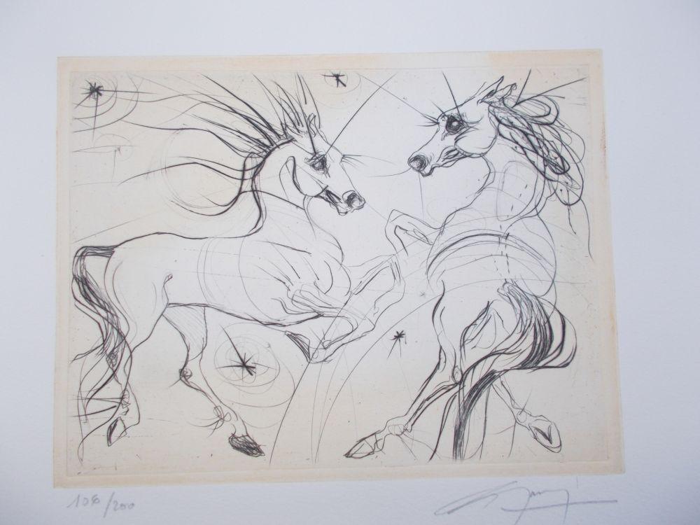 image-oeuvre-les_chevaux_du_printemps-1000-1000-78704